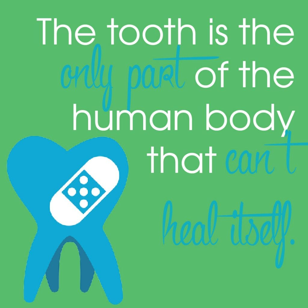 tooth-cant-heal-itself-1080x1080-2